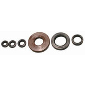 822209 - Honda ATV Oil Seal Set