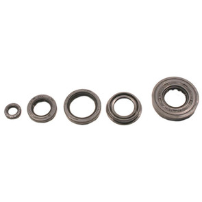 822217 - Arctic Cat ATV Oil Seal Set