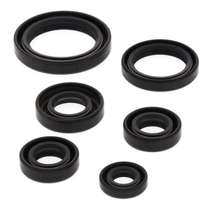 822241 - Kawasaki ATV Oil Seal Set