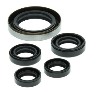 822249 - Polaris ATV Oil Seal Set