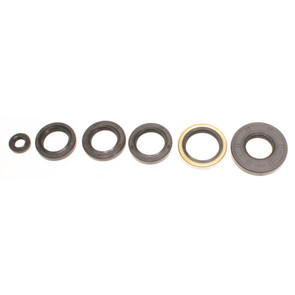 822251 - Arctic Cat ATV Oil Seal Set