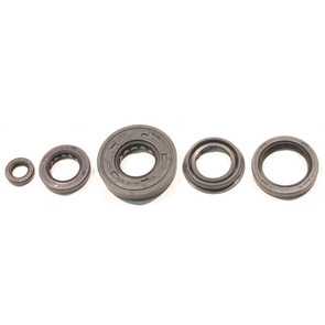 822261 - Polaris ATV Oil Seal Set