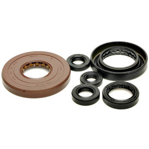 822276 - Honda ATV Oil Seal Set