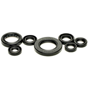 822311 - Honda ATV Oil Seal Set