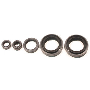 822334 - Kawasaki ATV Oil Seal Set