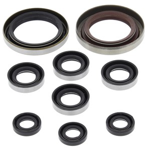 822335 - Polaris ATV Oil Seal Set